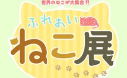 世界中の珍しい猫と触れ合える「ふれあい ねこ展」が神奈川県の横須賀で4/24から開催