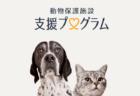 ほしいものリストで保護猫をサポートできるニャ!Amazonが「動物保護施設 支援プログラム」を開始