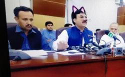 パキスタンの現役閣僚がネコの姿で記者会見を実施!?猫耳大臣として一躍人気者に