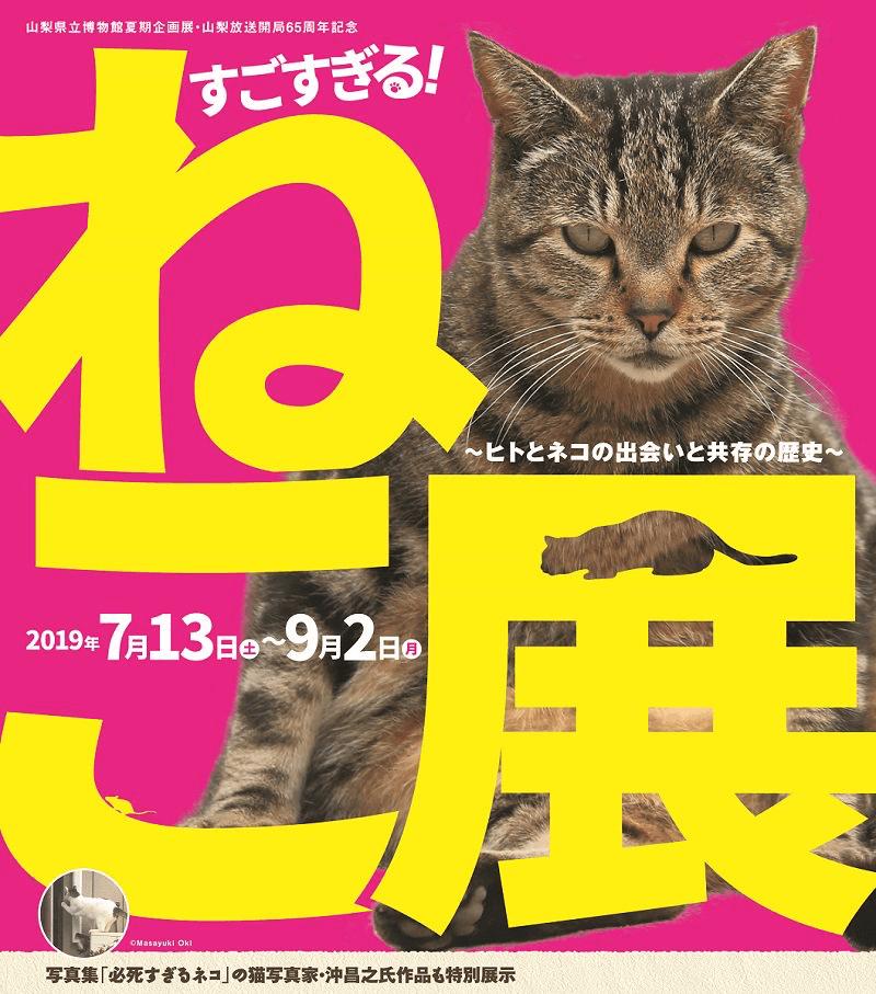山梨県立博物館で開催される「すごすぎる!ねこ展 ~ヒトとネコの出会いと共存の歴史~」メインビジュアル
