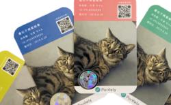 ネコ向けの遺伝子検査サービスが登場、アメショやマンチカンなど41の猫種に対応