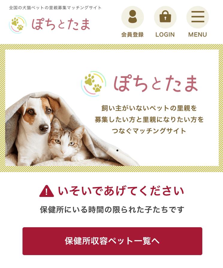 猫や犬の里親を募集できるWEBサービス「ぽちとたま」のサイトイメージ