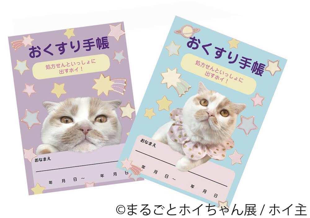 人気猫ホイップ(ホイちゃん)のおくすり手帳