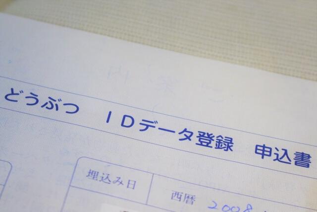猫のマイクロチップID登録用紙イメージ