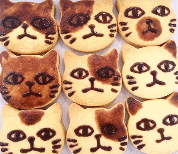 販売予定の 猫クッキーのイメージ