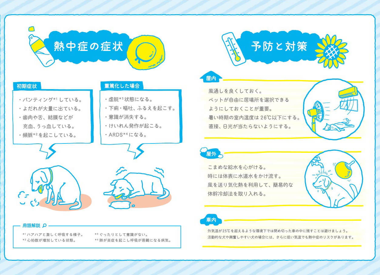 「イヌ・ネコの熱中症予防対策マニュアル」の中身イメージ