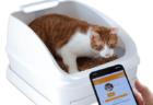 スマート猫トイレ「toletta(トレッタ)」が当たる or 20%オフになるキャンペーンを開始