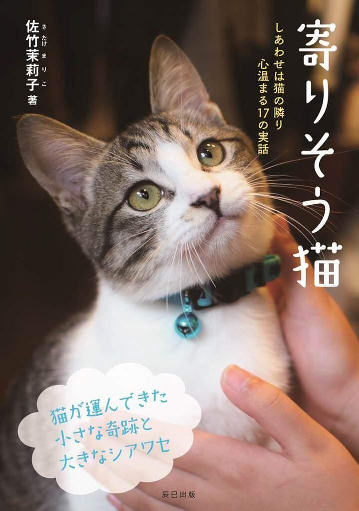 猫と人の心温まる17の実話を収録した書籍「寄りそう猫」の表紙