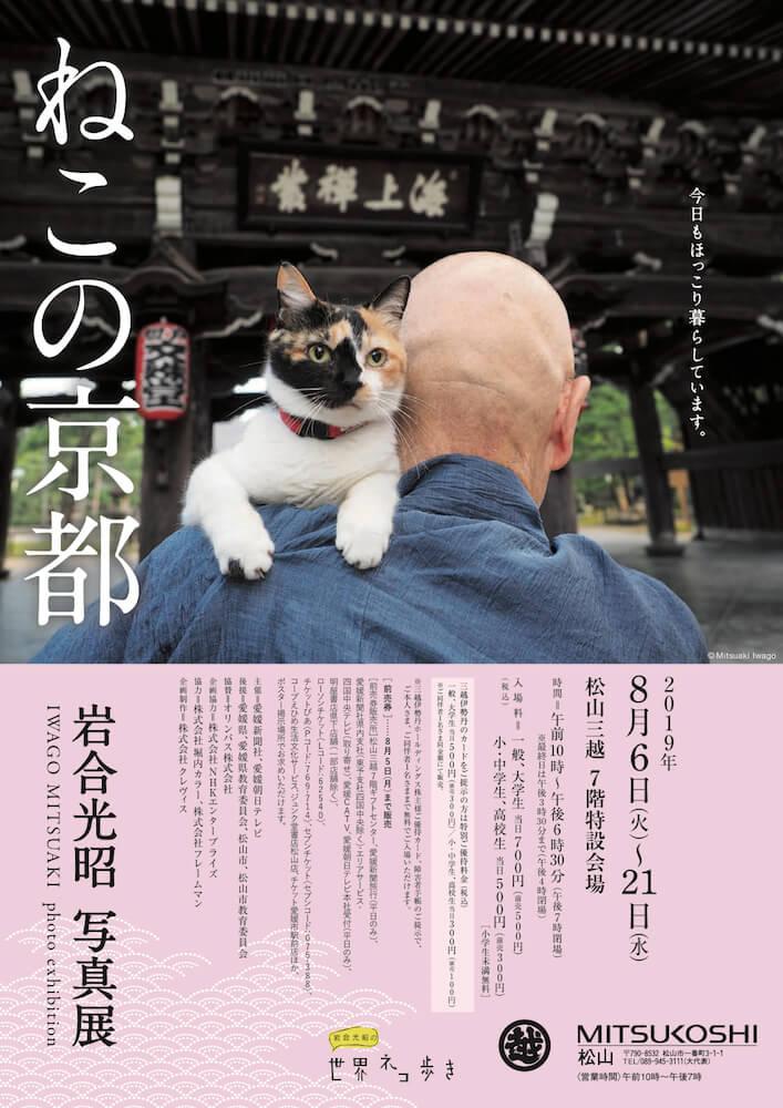 岩合光昭写真展「ねこの京都 in 松山三越」のメインビジュアル