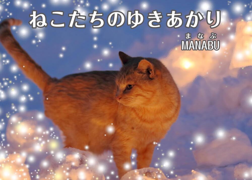 北海道の猫を描いた絵本作品「ねこたちのゆきあかり」の表紙