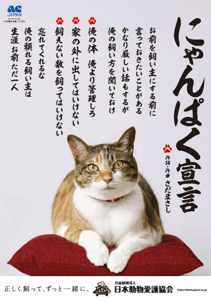 ACジャパンのCM「にゃんぱく宣言」のメインビジュアル