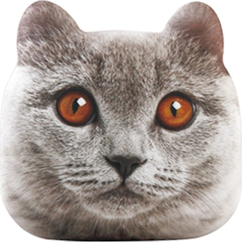 猫のモバイルバッテリー「にゃんこチャージ」ブラウンアイズのデザイン