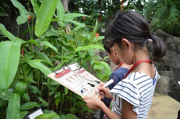 小田原フラワーガーデンのトロピカルドーム温室で開催される体験プログラム「アロア・ワッド探検隊」の様子