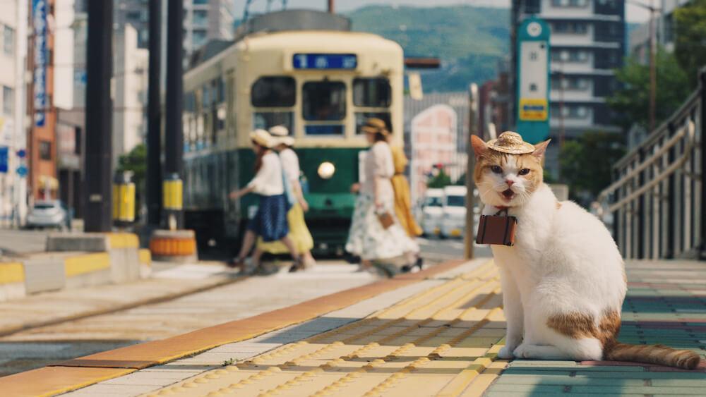 路面電車の走る街を観光する「にゃらん」 by じゃらんのCM「幸せな旅」篇(15秒)