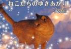 冬の北海道で必死に生きる野良猫たちの命を描いた物語「ねこたちのゆきあかり」