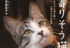 人と猫の幸せには色んなカタチがあるニャ…心温まる17の実話でつづった書籍「寄りそう猫」