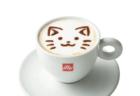 「ねこがかわいいだけ展」の大阪会場にコラボカフェが登場!パンケーキなどの猫メニューを提供