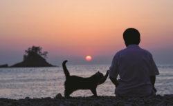 夕陽をバックにした大吉じいちゃんと猫のタマ by ねことじいちゃん