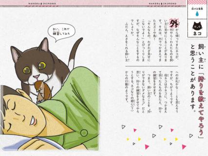 猫が獲物を見せにくるのは残念な理由があったのニャ…新刊「泣けるいきもの図鑑 イヌ・ネコ編」