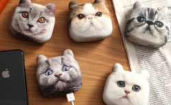 ネコ好きならバッグに1個忍ばせておきたい、超リアルな猫の充電器「にゃんこチャージ」