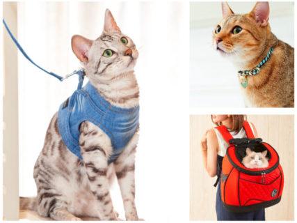 オシャレな猫用品のセレクトショップ「necosekai(ネコセカイ)」エキュート品川に出店中