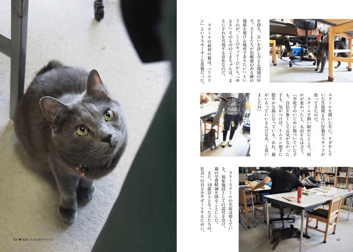 書籍「寄りそう猫」のエピソード8、自由に生きればいいんだよ