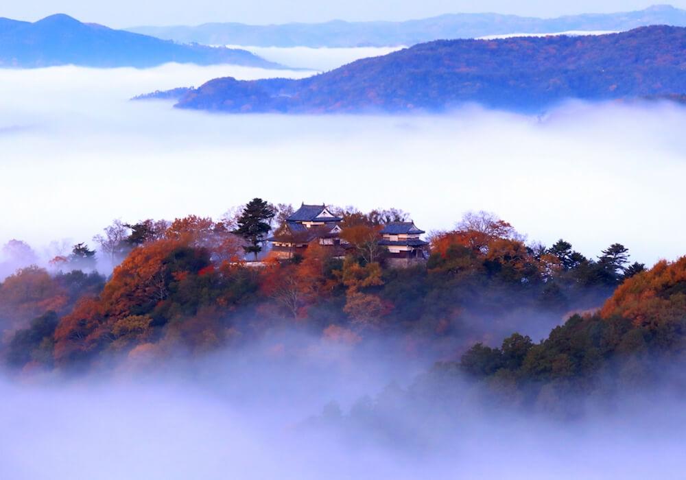 天空の山城とも呼ばれる「備中松山城」が雲海に浮かぶ様子