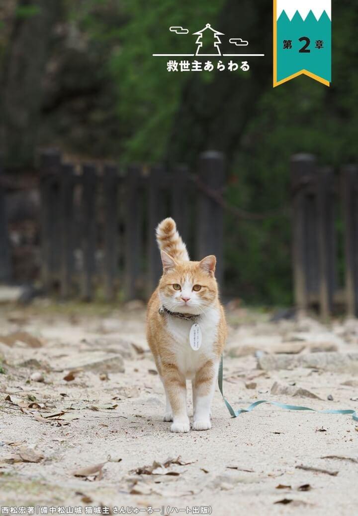 備中松山城の城主&茶白猫「さんじゅーろー」