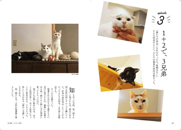 書籍「寄りそう猫」のエピソード3、母さんは、犬