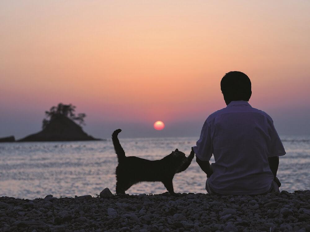 夕陽をバックにした大吉じいちゃんと猫のタマ