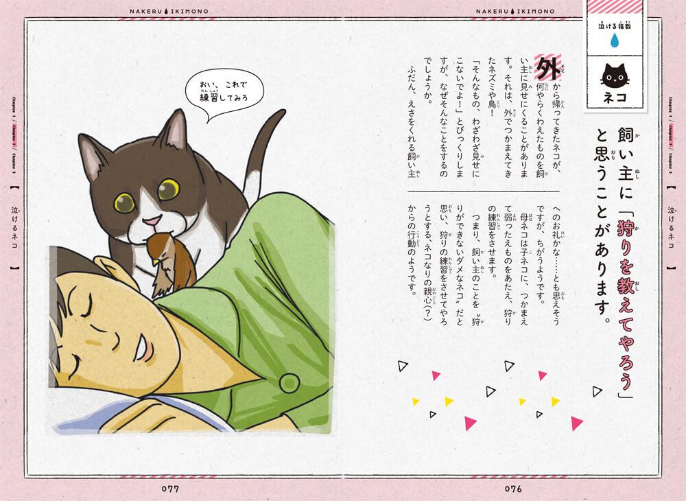 書籍「泣けるいきもの図鑑 イヌ・ネコ編」の猫が飼い主の元に獲物を持ってくるエピソード