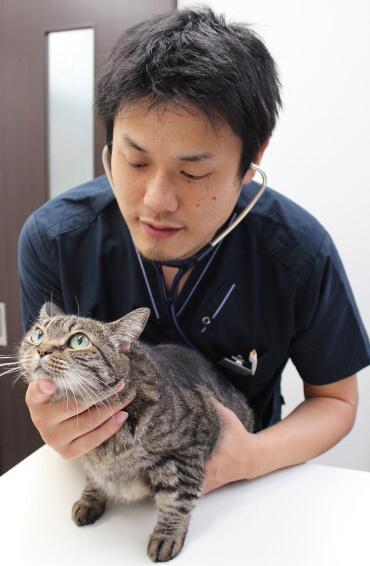 猫専門の動物病院・東京猫医療センターの院長で、獣医師の服部幸氏