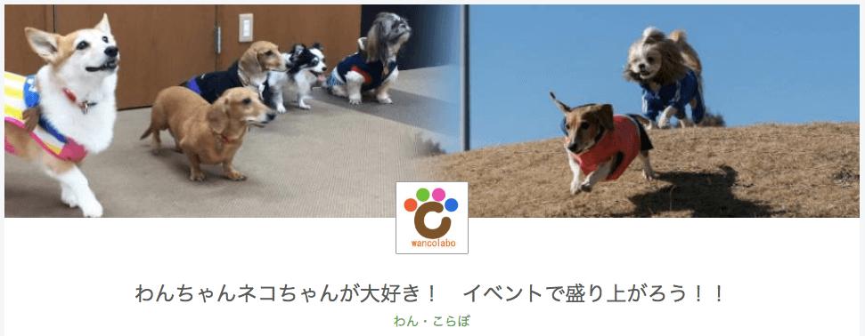 犬猫向けのイベントなどを企画運営している「わん・こらぼ」