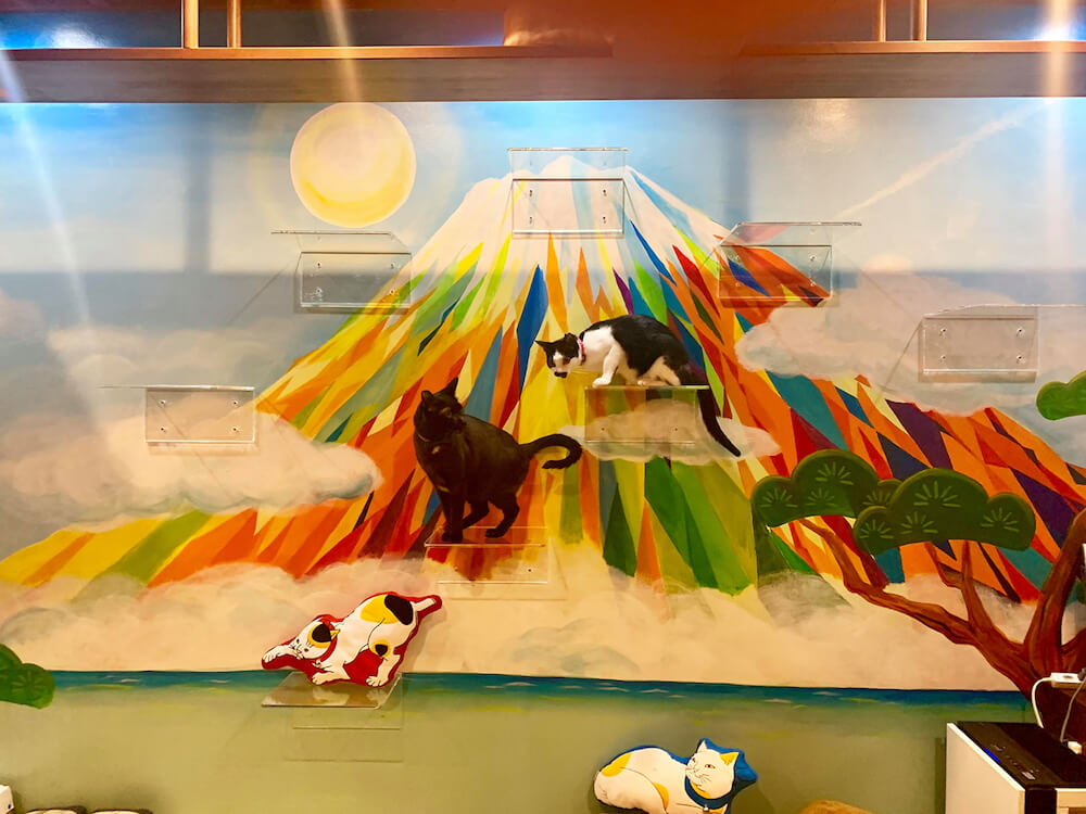 富士山の絵に備え付けられた透明なキャットステップに乗る猫