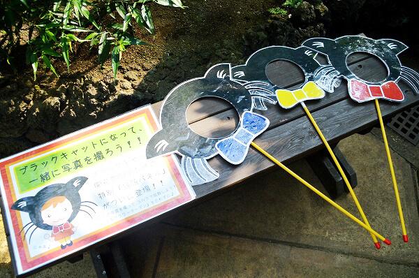 小田原フラワーガーデンにある黒猫のフォトプロップス