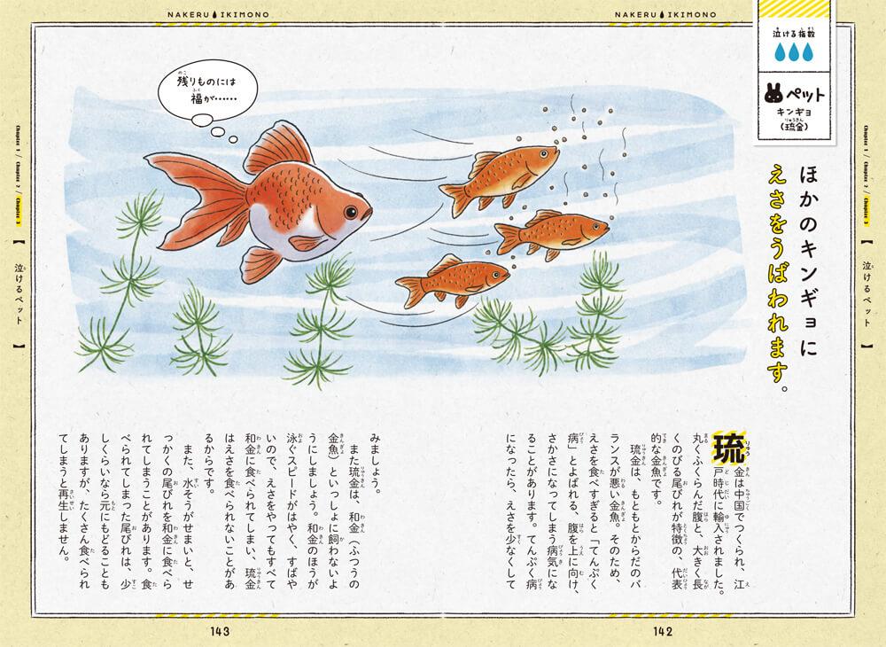 書籍「泣けるいきもの図鑑 イヌ・ネコ編」の金魚のエピソード