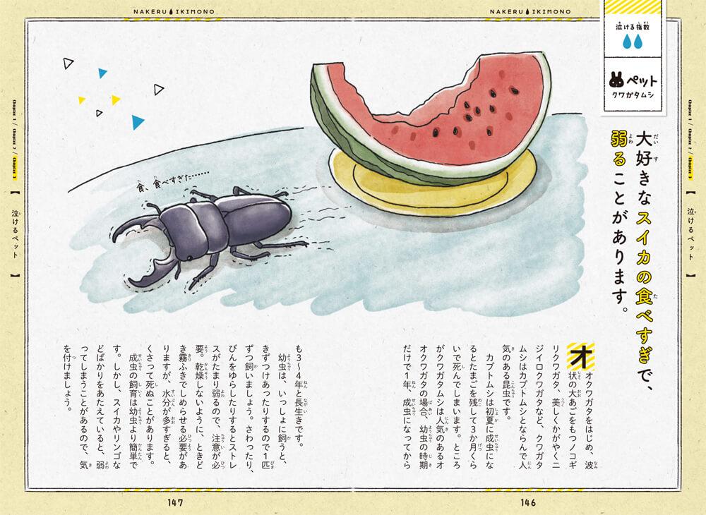 書籍「泣けるいきもの図鑑 イヌ・ネコ編」のクワガタのエピソード