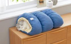 ふかふかベッドもあるニャ〜ペピイが新しいペット用品ブランドSippole(しっぽる)を公開