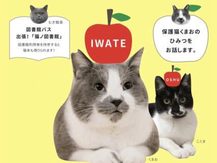 人気猫「くまお」のヒミツを語るトークイベントもあるニャ〜奥州市で「県南ねこ会議」が開催