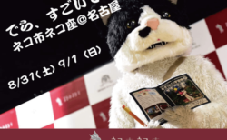 ネコ市ネコ座が名古屋で初開催!むぎ(猫)のライブやネコヨガなど盛りだくさんの2日間