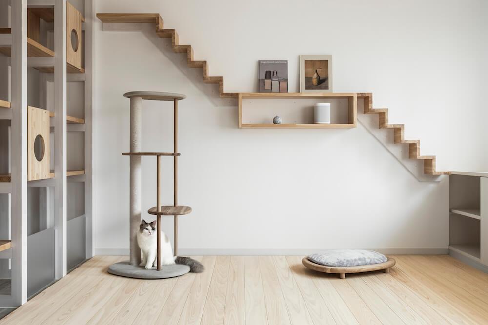 猫専用フローリング材「NEKOFLOOR(ネコフロア)」を設置した室内イメージと猫
