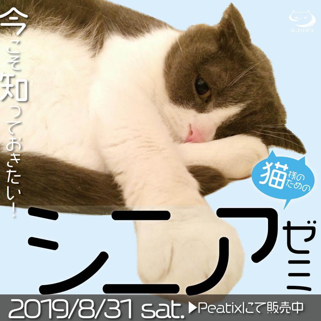 ネコソダテ「今から知っておきたい!猫様のためのシニアゼミ」メインビジュアル