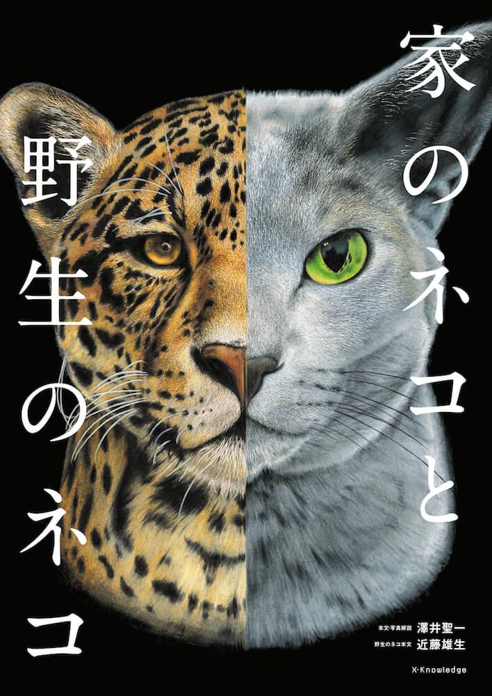 図鑑「家のネコと野生のネコ」のメインビジュアル