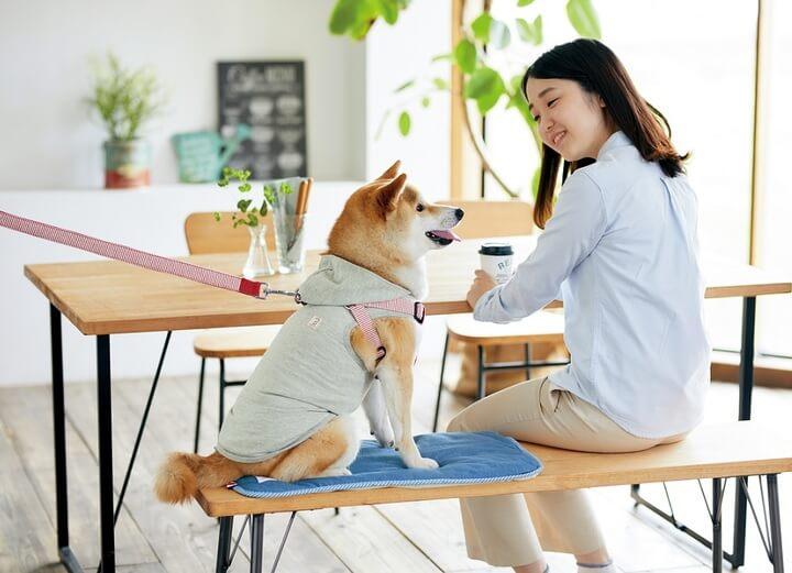 ペット関連サービス・ペピイの新ブランド「Sippole(しっぽる)」