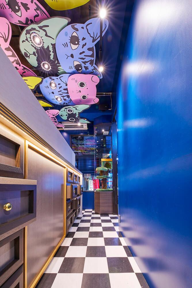 猫甜茶室(ねこてんちゃしつ) capioca(カピオカ)の内装イメージ写真