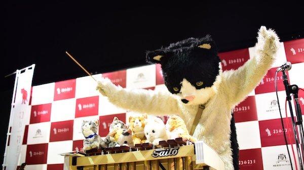 むぎ(猫)のライブパフォーマンス
