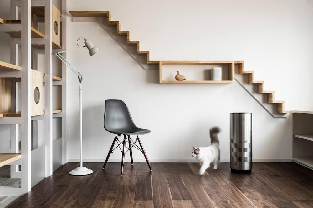 猫用フローリング材「NEKOFLOOR(ネコフロア)」ウォルナットを設置した室内イメージ