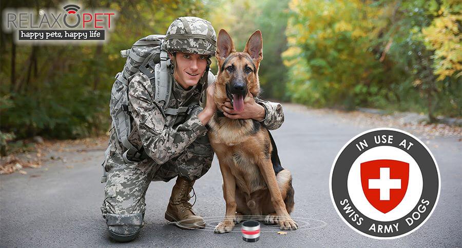スイス軍の軍用犬をリラックスさせるために導入された「RelaxoPet PRO (リラックス・オ・ペット プロ)」