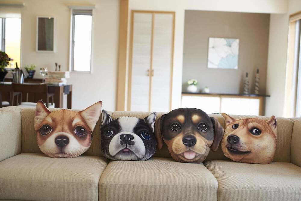Koira&Kissa(コイラキッサ)の犬クッションをソファに並べたイメージ