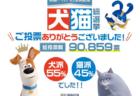 犬派よりも猫派が多かった都道府県は全部で「12」あったニャ!犬猫総選挙が結果発表